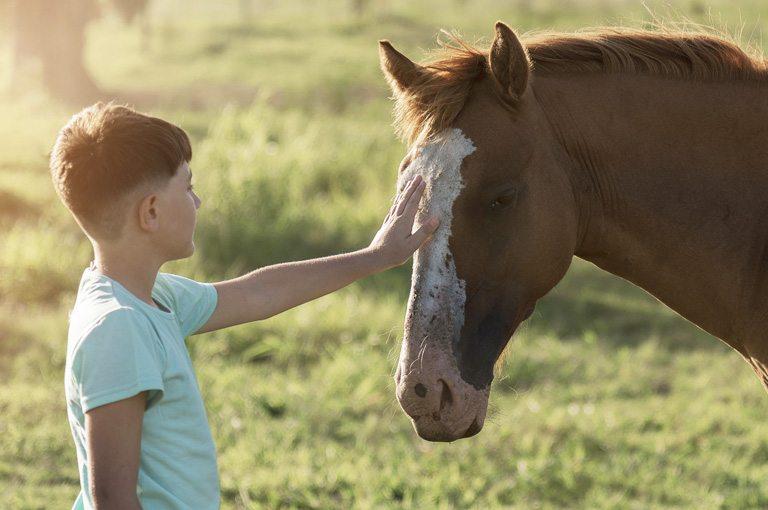 Paseos a caballo con niños en Asturias. Los Cauces MultiAventura.