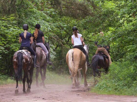 Paseos a caballo en Arriondas
