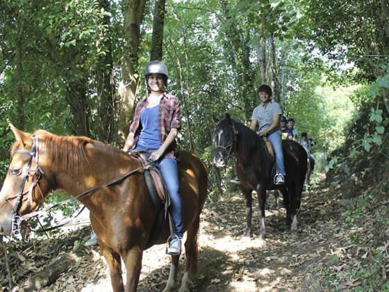 Consejos de Seguridad para montar a caballo. Los Cauces MultiAventura